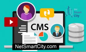 تفاوت برنامه نویسی وب و طراحی وب سایت با CMS
